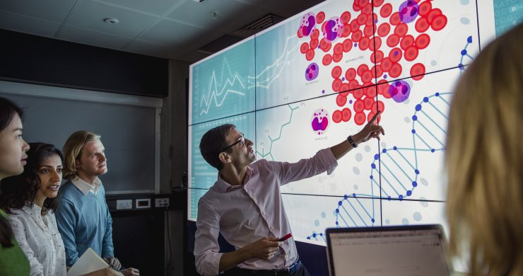 How to Build a Data-Driven Business Strategy