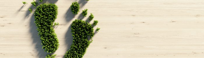 How Can a Tech Company Reduce Its Carbon Footprint?