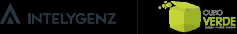 Intelygenz Carbon Footprint Report 2019
